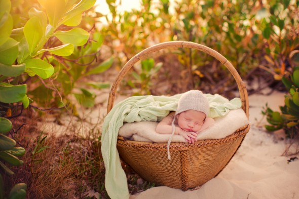 Humboldt newborn photographer