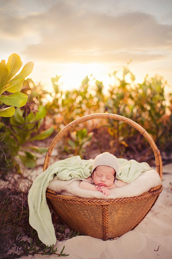 Humboldt newborn photographer